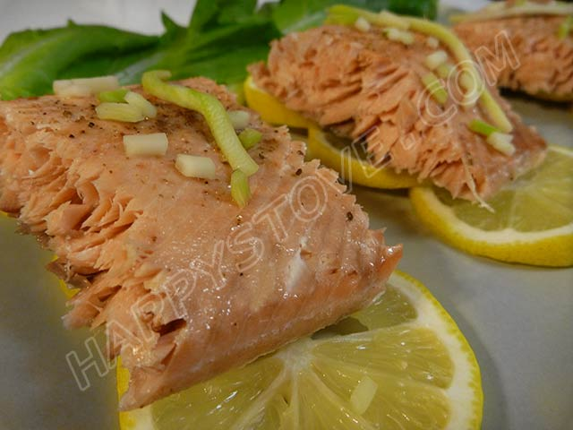 Oven Baked Salmon Fillet - By happystove.com